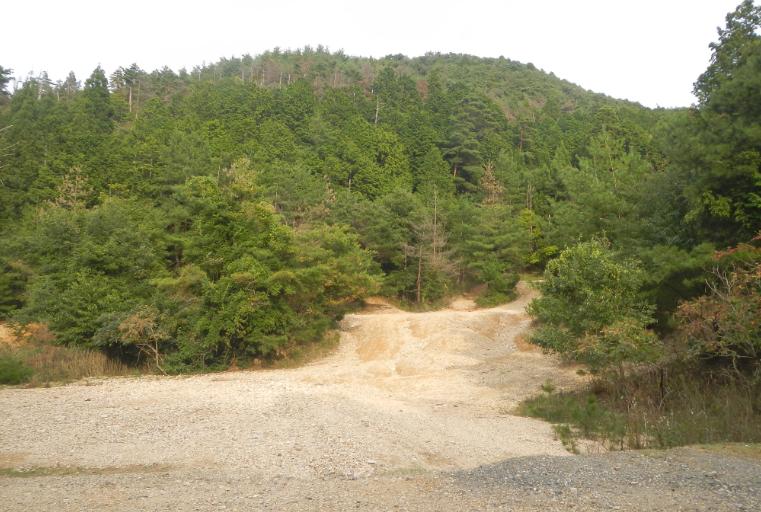 2014-10-04_202708