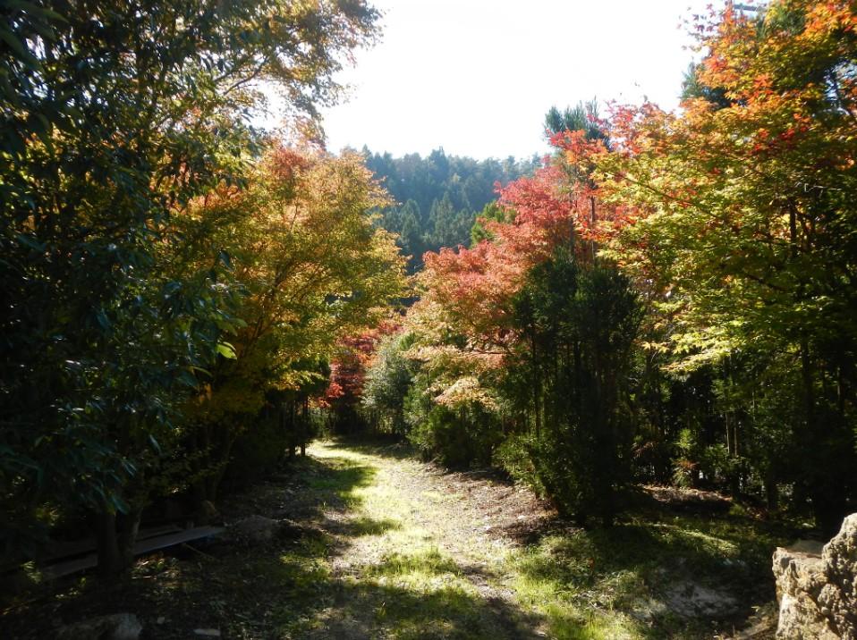 2014-10-29_234747