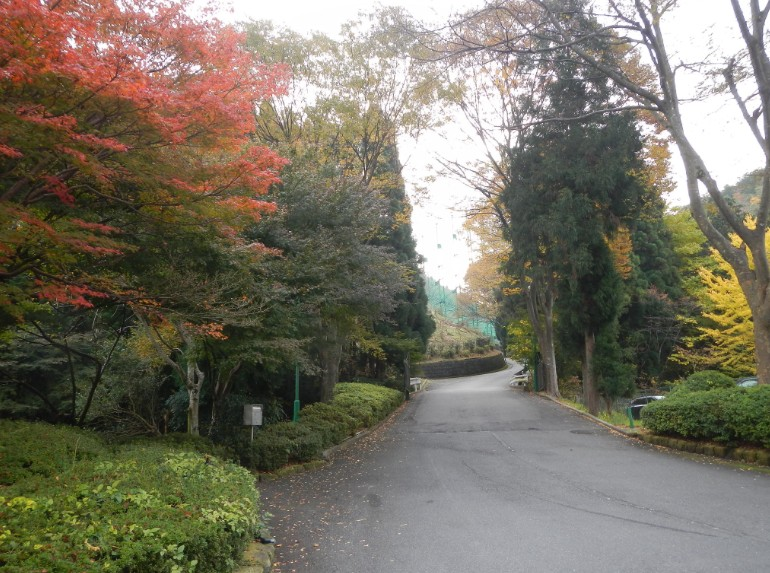 2014-11-17_123111