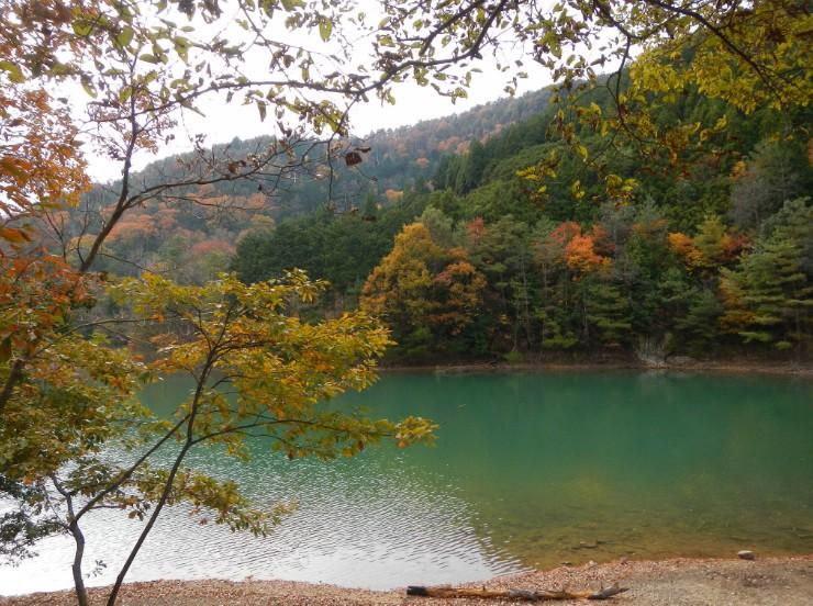 京都の沢ノ池