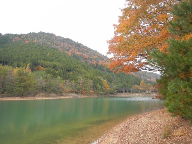 2014年11月24日の沢ノ池の紅葉