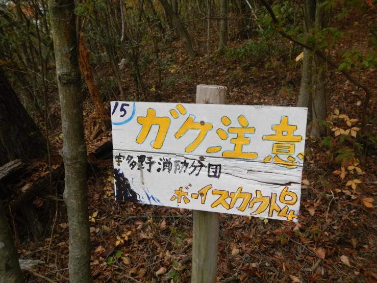 2014-11-24_204458