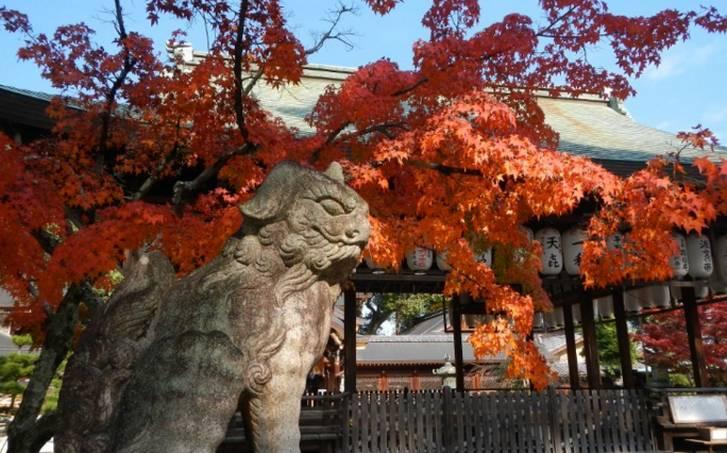 紅葉の時期には地元の方や観光客で賑やかになってきます