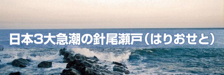 日本3大急潮の針尾瀬戸(はりおせと)