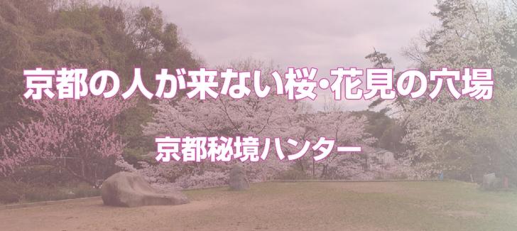 京都の人が来ない桜・花見の穴場
