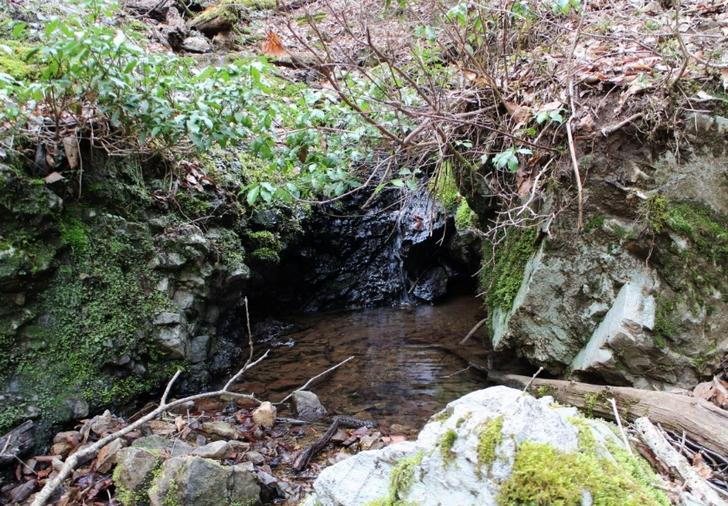 鴨川の源流その3