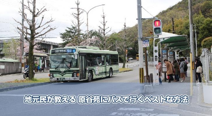 地元民が教える 原谷苑にバスで行くベストな方法