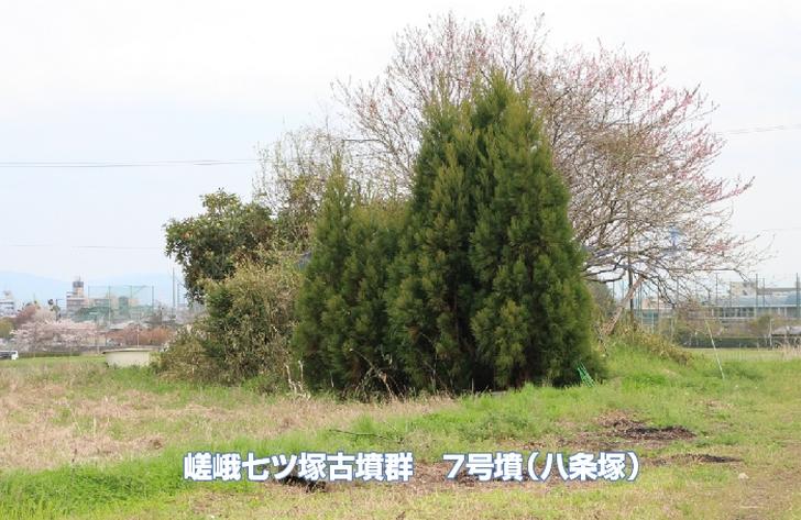 嵯峨七ツ塚古墳群 7号墳(八条塚)