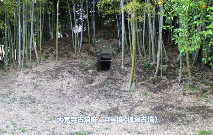 2016年4月8日の撮影時は竹藪に覆われていました