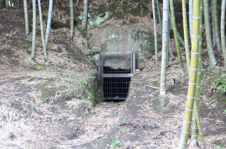 狐塚古墳の石室入口(2016年4月8日撮影)