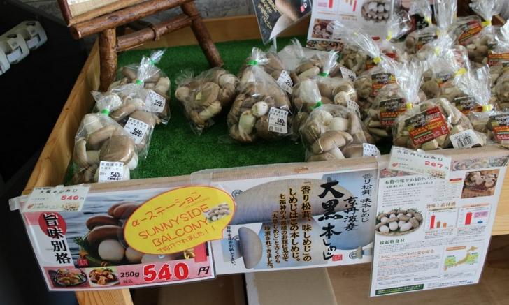 道の駅「スプリングひよし」の特産品販売