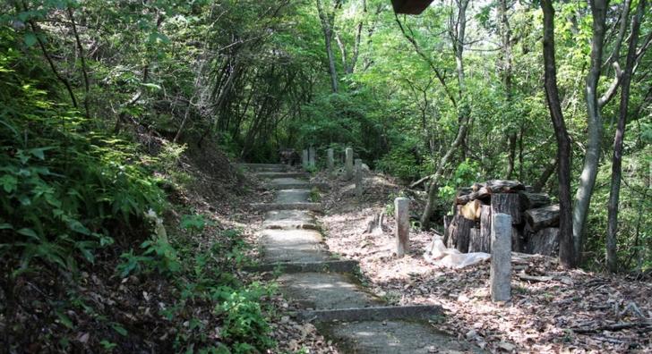 成就山八十八カ所霊場の道