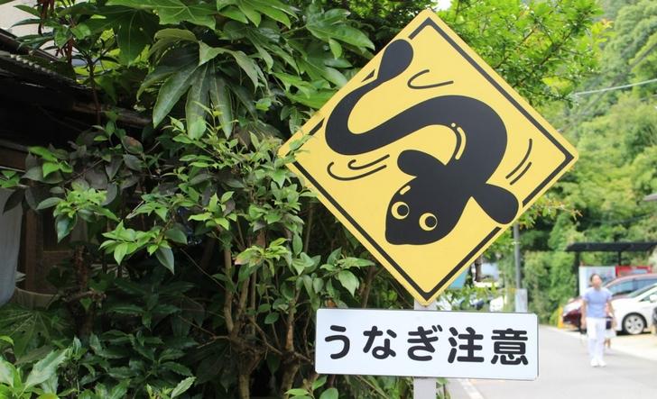 滋賀県大津市にある「うなぎ注意」の看板
