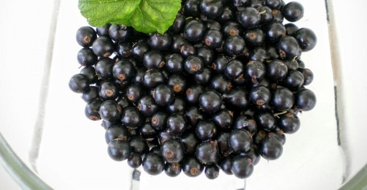 カシスといえば北欧の果物