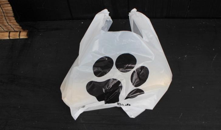 京都でネコのしっぽが食べられる?