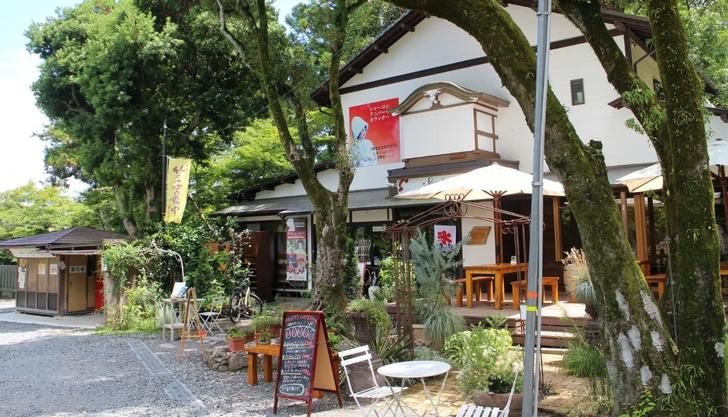 ちゅうちゅうパッションが京都で飲める西日本唯一のお店