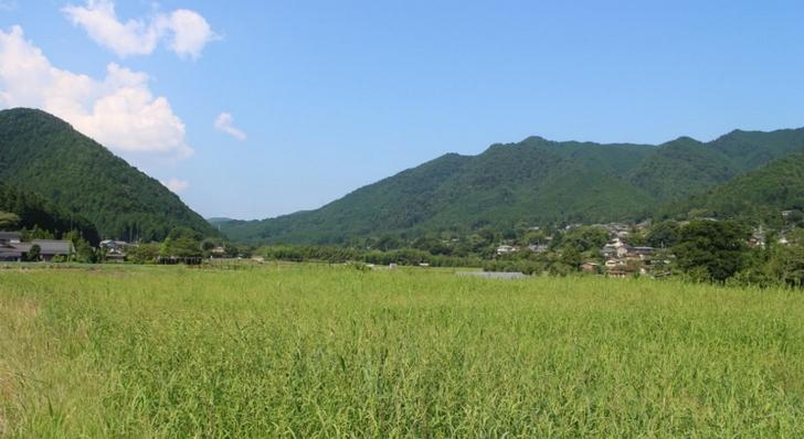 京都の大原