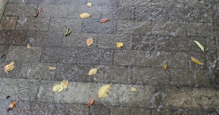 いきなり大粒の雨が降り出し、道は川のように変貌