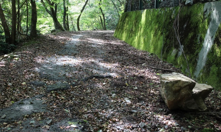 金比羅神社より先は前代未聞の悪路になります