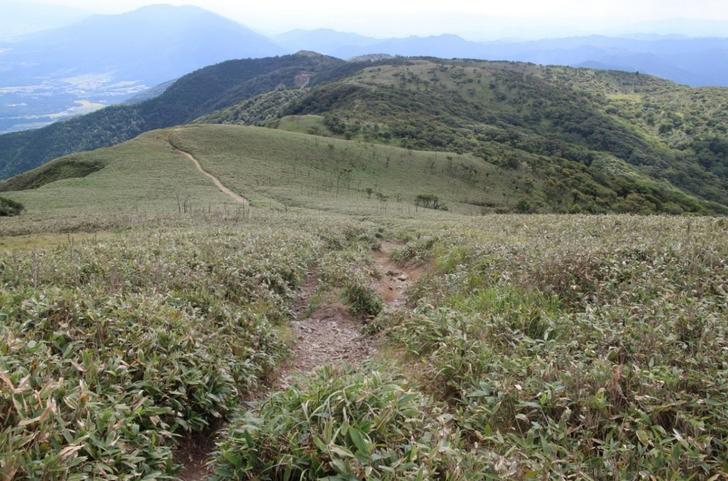 蓬莱山までハイキングコースがあります