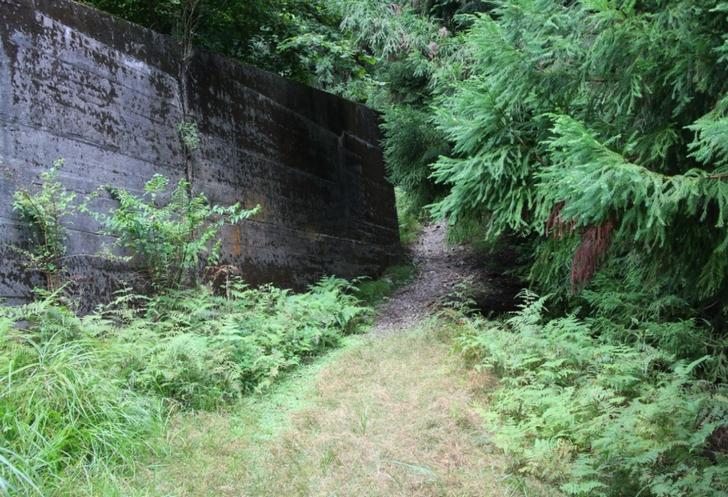 湖西道路の側道から山へ入る道1