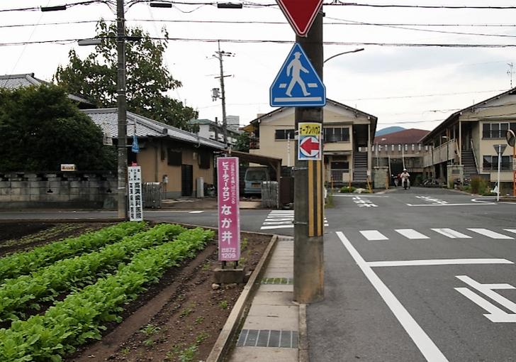 三叉路っぽい道の手前の道を左折