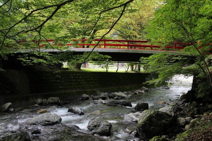 清流と緑の自然に赤い橋が曇天でもきれいです