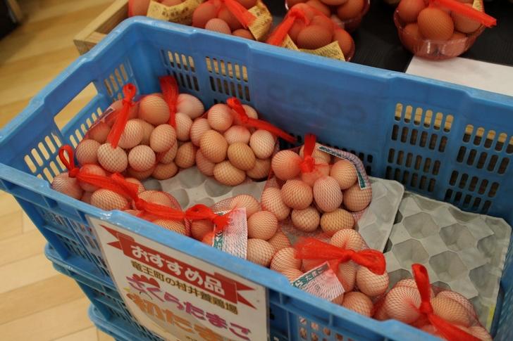 サイズは通常の卵の半分からすこし大きいくらいです