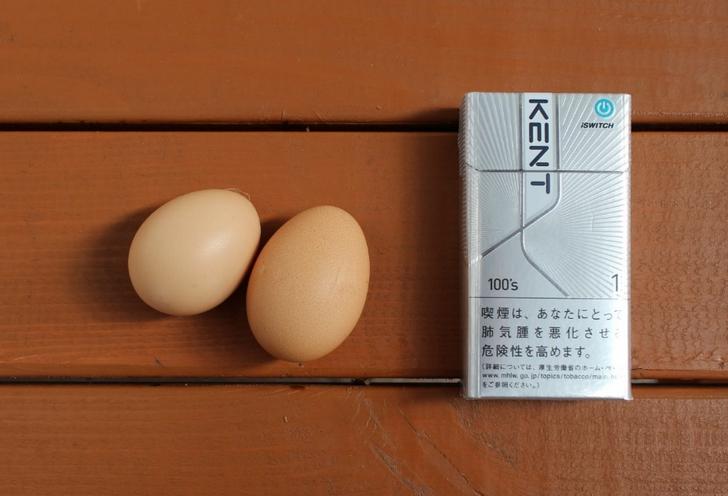 サイズ比較 かなり小さい卵で不揃いなのがわかります