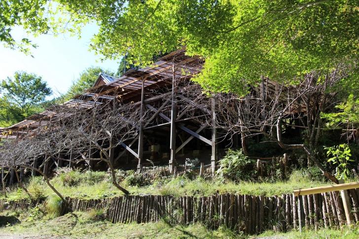 山の家はせがわ 手造りのログハウスレストランです