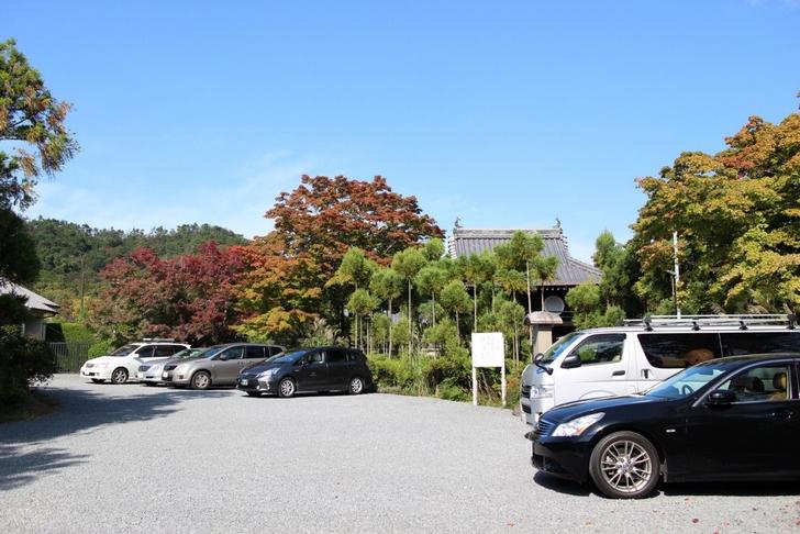 駐車場から見える景色は紅葉っぽいのですが・・・・