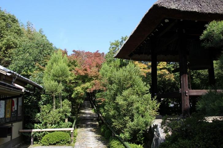 光悦寺の紅葉の状況 2016年10月30日撮影