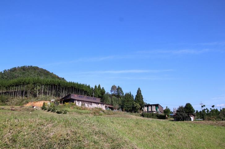 北区の山は京都でも紅葉がはやいタイミングで見られます