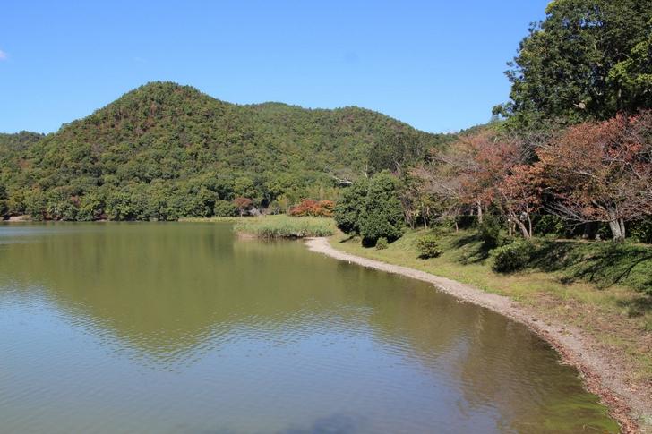 普段は非公開ですが「平安郷」は桜と紅葉の名所で広沢池からも見ることができます