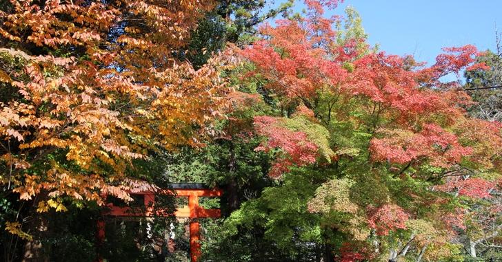 大田神社は境内入り口で紅葉を少し楽しむことができる神社です