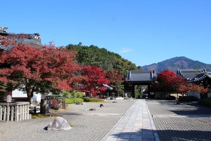 妙満寺は隠れた紅葉スポットで比叡山の紅葉を眺めることもできます