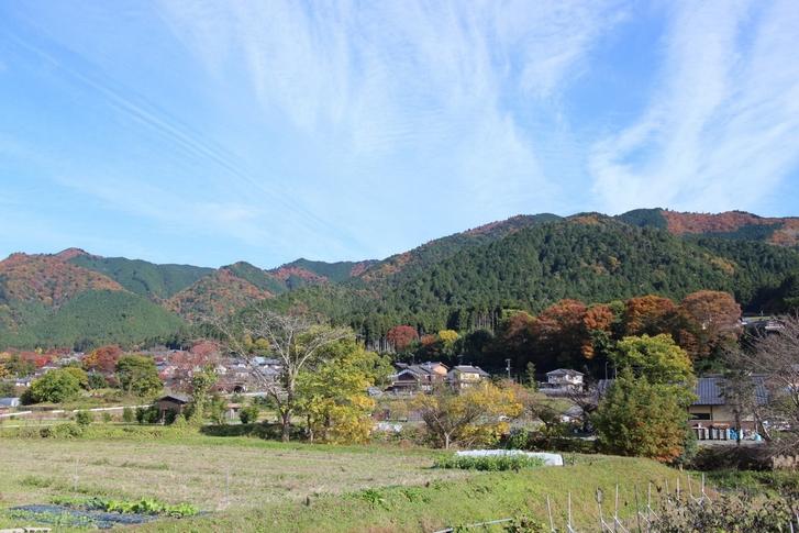 京都の大原が少し残念だったので温泉担当に問いただした所から始まります