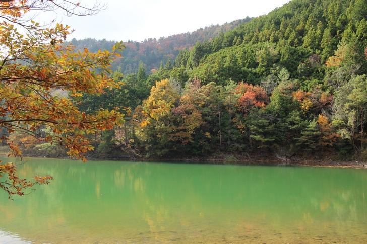沢ノ池は京都市内から行ける秘境です