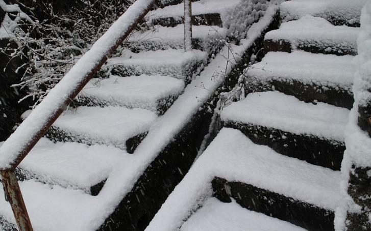 2016年1月20日(水)の降雪は少なめですが積もりました