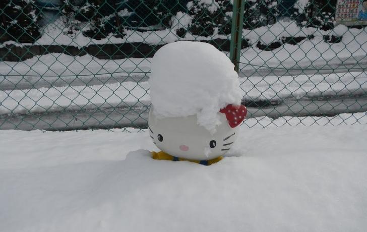 京都の降雪は意外とエグいです(写真は別の年)