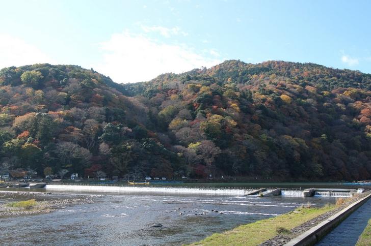 参考写真:嵐山の紅葉、これでピークの半分くらい(2016年11月24日)