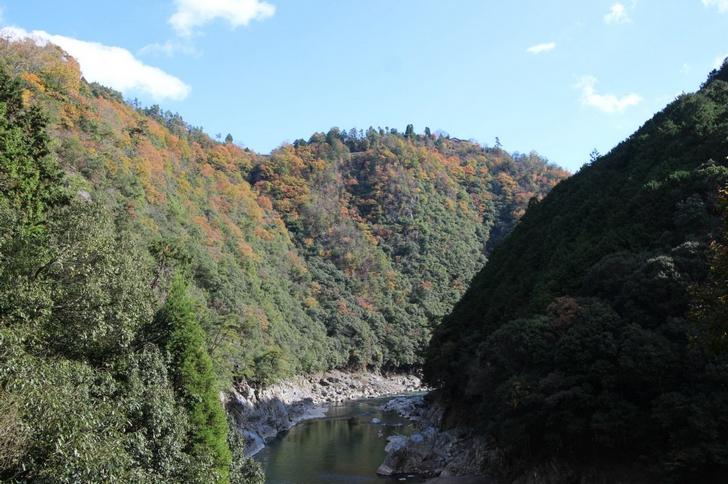 保津川の紅葉、もうほぼ終わってますね