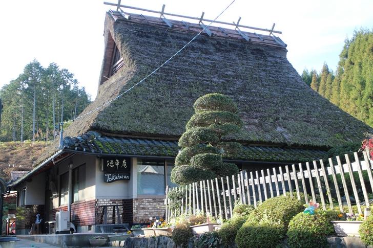 徳平庵(とくへいあん) 茅葺き(かやぶき)の屋根はこのあたりでは珍しいです