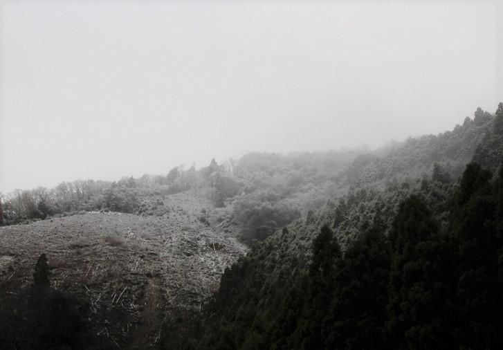 十三石山の山頂付近は冠雪していました