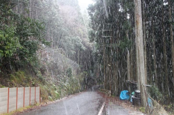 雲ケ畑は吹雪でかなりの降雪となっていました