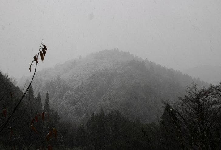 持越峠(半国高山)方面は吹雪いてよく見えない状況です