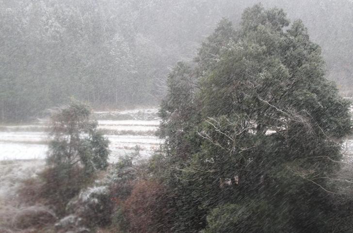 「式内巌島神社」付近で猛吹雪に見舞われました