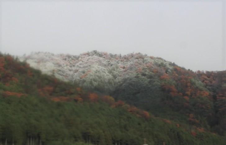 2016年12月16日朝9時過ぎの晴れ間から見た京都・西賀茂小峠の冠雪