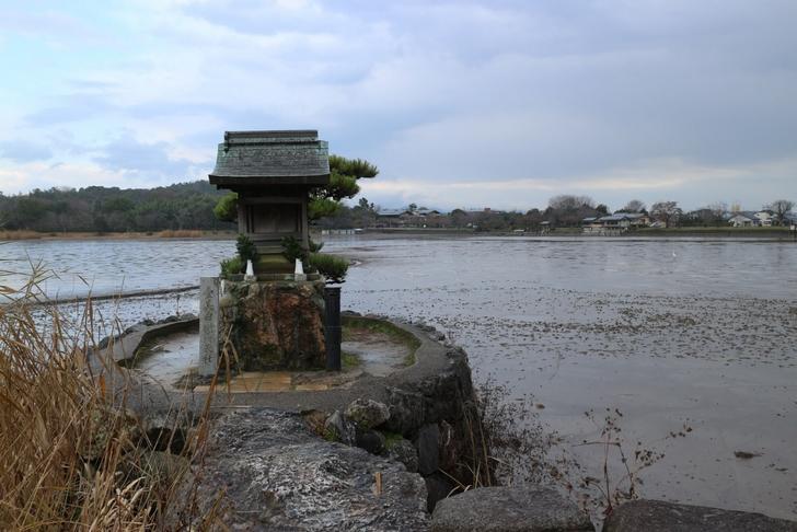 あれ?水がない京都・広沢池