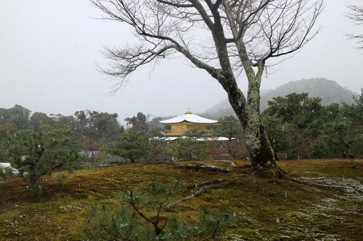 京都 2016年12月28日の「雪化粧の金閣寺」を見に行きました